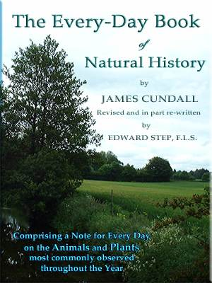 Go to the eBook Shop